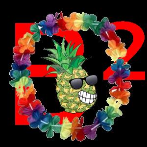 Hawaii im B2